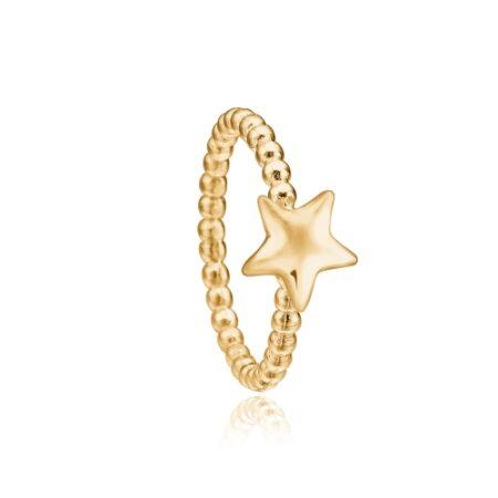 Priesme stjerne ring i 24 karat forgyldt sølv